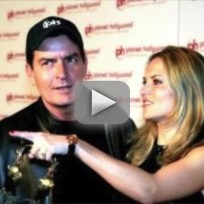 Charlie sheen brooke mueller custody battle