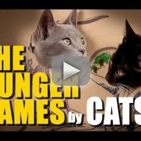 Cats-act-out-the-hunger-games