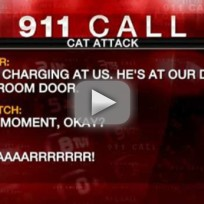 Family-calls-911-over-angry-cat