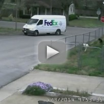 FedEx Driver Chases After Runaway Van