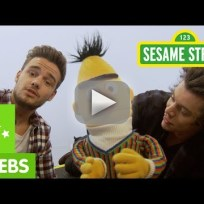 Harry styles and liam payne on sesame street