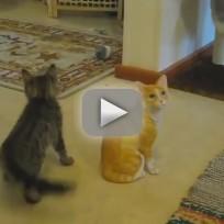 Real Cat vs. Ceramic Cat