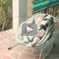 Puppy Jumps Up to Snuggle with Baby