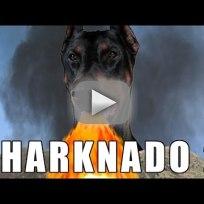 Sharknado 2 Parodies: We're All Gonna Die!!!
