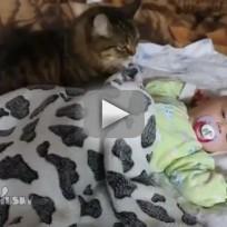 Cat Comforts Sleeping Baby