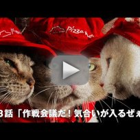 Pizza-cats-pizza-hut-commercial