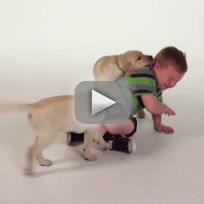 Apparently kid dog food commercial