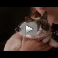 Grumpy Cat's Worst Christmas Ever Trailer