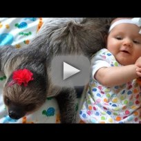 Baby and sloth total best friends