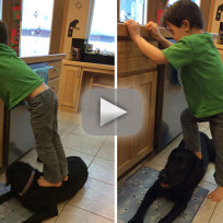 Sarah palins son steps on family dog