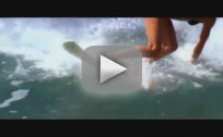 Soul Surfer Trailer