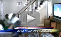 Home Invasion Nanny-Cam