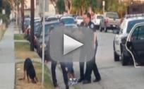 Police Officer Shoots Dog