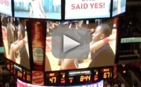 Bulls Cheerleader Gets Engaged During Game