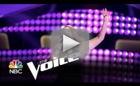 Audra McLaughlin - Angel from Montgomery (The Voice Audition)