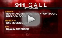 Family Calls 911 Over Angry Cat