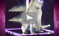 Miley Cyrus Sings For Floyd