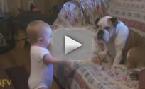 Baby Argues with Puppy