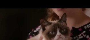 Grumpy cats worst christmas ever trailer