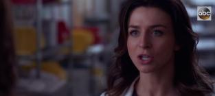 Greys anatomy season 11 episode 13 promo