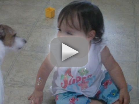 Dog and Tiny Owner Play with Bubbles
