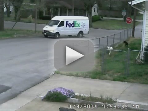 Delivery Man Fail