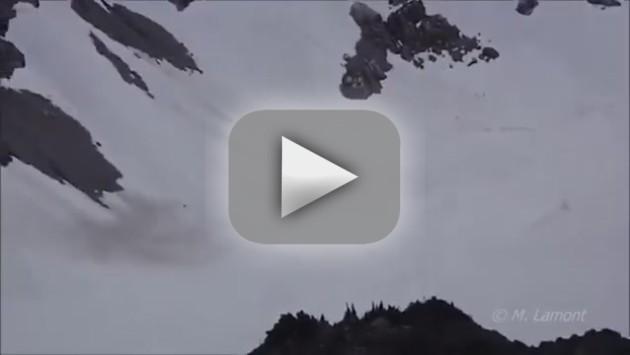 Sasquatch Video: Real or Fake?!