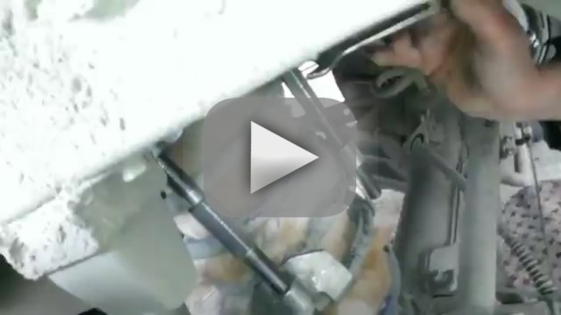 AMAZING Cat Rescue