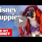 Dogs Dress as Disney Characters