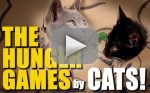 Cats Act Out The Hunger Games