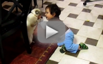 Kittens vs. Kids