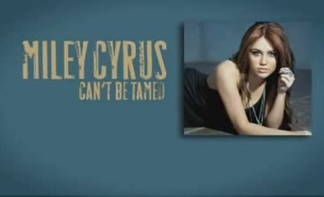 Can't Be Tamed Audio