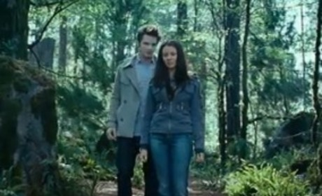 Matt Lanter Taunts Twihards: Bring It On!