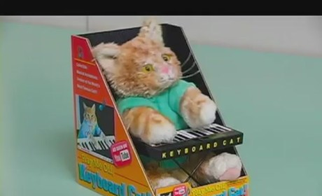 Keyboard Cat Action Figure!