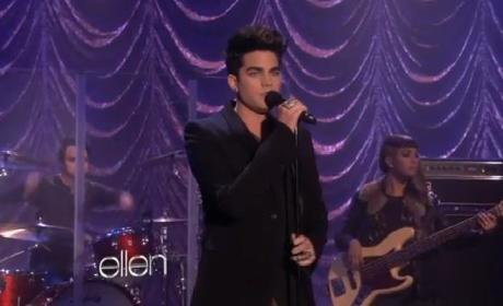 Adam Lambert Performs New Single on Ellen