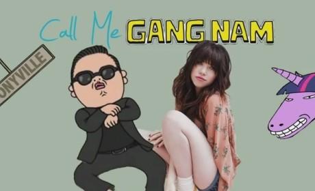 Call Me Gangnam (Call Me Maybe-Gangnam Style Remix)