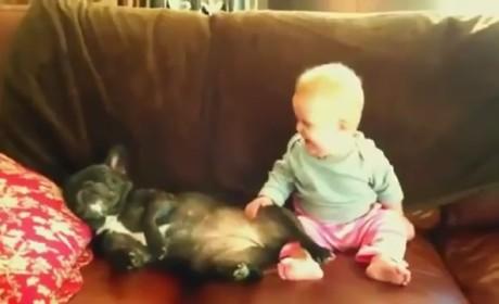 Baby Laughs at Snoring Dog
