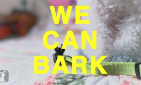 We Can Bark - Miley Cyrus Parody