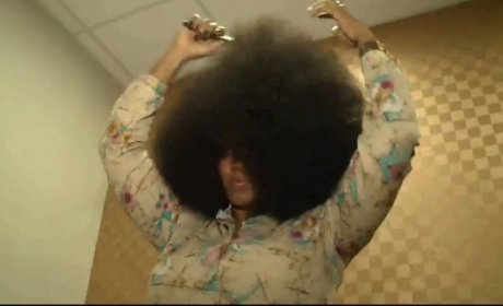 The World's Largest Afro