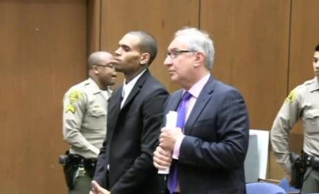 Chris Brown Probation Reinstated