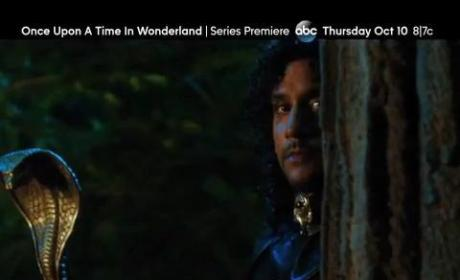 Once Upon A Time In Wonderland Trailer