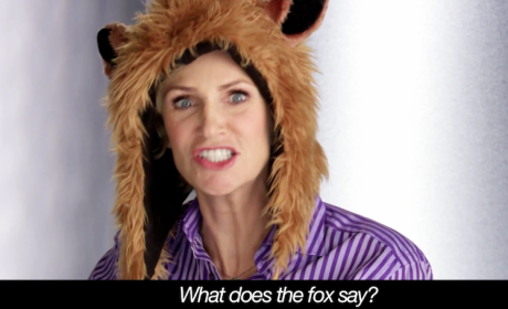 What Does the Fox Say ... Fox Stars Ask in Fall TV Promo!