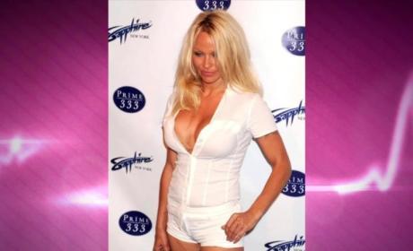 Pamela Anderson Debt