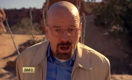 Breaking Bad Series Finale Trailer: How Will It End?