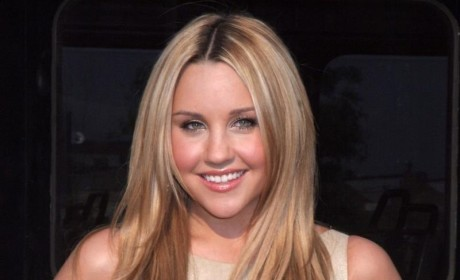 Amanda Bynes' Mom Applauded by Judge