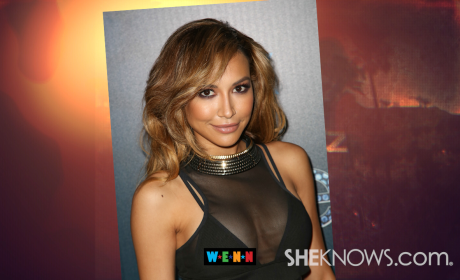 Naya Rivera Boob Job Rumors Sparked by Busty Bikini Pic: Weigh In Now!