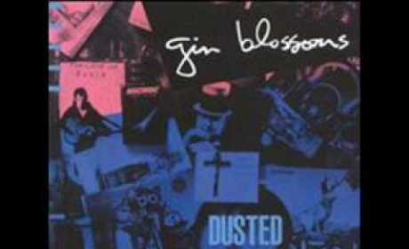 Gin Blossoms - Fireworks