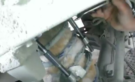 Cat Rescued from UNDER Toyota Land Cruiser: Watch the Footage!