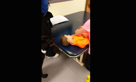Dog Helps Child Recover from Surgery
