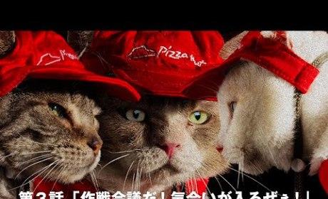 Pizza Cats Pizza Hut Commercial